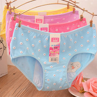2016 Physiological Briefs Leakproof Sexy Menstrual Period Underwear Women Broadened Foral Health Female Panties Calcinha