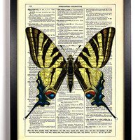Zebra Butterfly Repurposed Book Upcycled Dictionary Art Vintage Book Print Recycled Vintage Dictionary Page Beautiful Buy 2 Get 1 FREE