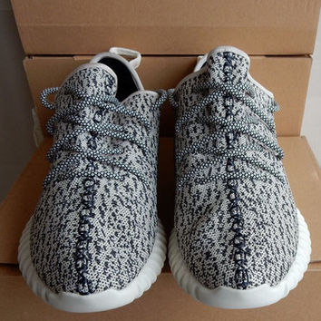 Adidas Yeezy Boost 350 Turtle Dove gray