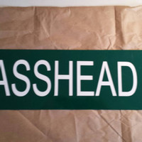 "24"" X 6"" Aluminum Basshead BLVD Street Sign Bassnectar Pretty Lights EDM Heady Festival Lorin Pin for your Wall Pins Basement Garage"