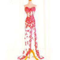 Elegant Luxuary Lace Prom Gown / Evening dress - multicolors in