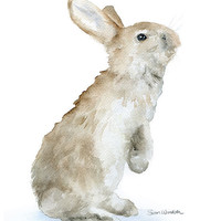 Bunny Watercolor Painting Giclee Print 11 x 14