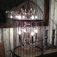 Bronze Eight Light Birdcage Chandelier