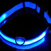 FREE SHIPPING! Bright LED light up dog collars in a variety of colors and sizes! Free shipping in the continental U.S.