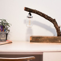 Rustic Natural Tree Branch Mason Jar Desk Lamp With Modern Toggle Switch