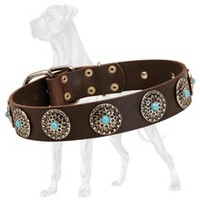 Great Dane Leather Collar with Plated Circles and Blue Stones [C75##1094 Leather Collar Blue Stones] : Great Dane harness, Great Dane dog muzzle, Great Dane dog collar, Dog leash, Great Dane