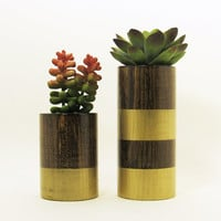 Round Wood Succulent Planter Pot, Modern Plant Holders, Indoor Garden Planter, Cactus Planters, Office Planters, Home Decor, Gold - Set of 2