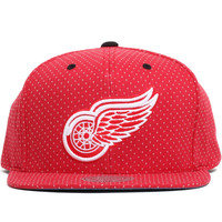 Detroit Red Wings Dotted Cotton Snapback Hat Red