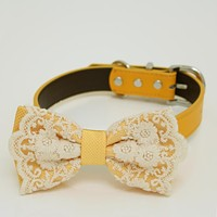 Yellow Dog Bow Tie attached to collar, Bow tie with a charm, dog birthday , Wedding dog collar