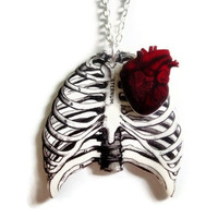 Anatomical Ribcage Necklace Red Anatomy Heart Nickel Free Silver