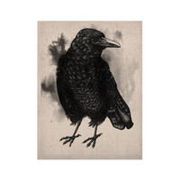 """Sophy Tuttle """"Crow"""" Black White KESS Naturals Canvas (Frame not Included)"""