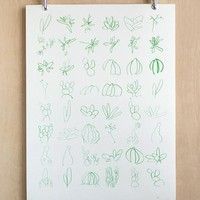 Minimalistic Succulent Sketches in Green Makelike Poster