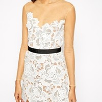 Self Portrait Harmony Lace Cutwork Dress With Mesh Sleeves