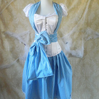 Dorothy/Wizard Of Oz Corset Outfit-Whole Corset Outfit-To Fit 28-30 Inch Natural Waist
