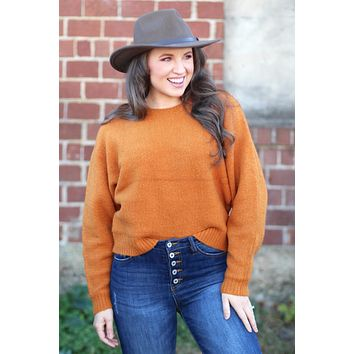 {Cinnamon} Soft Dolman Sleeve Sweater