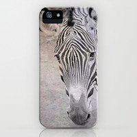 zebra iPhone & iPod Case by Marianna Tankelevich