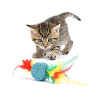 Pet Sisal Cylinder Toy For Cats Kittens Interactive Multi-Color Feathers Toy Non-Toxic And Funny Cat Supplies