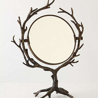 Anthropologie - Who's the Fairest Mirror