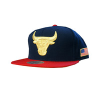 Mitchell & Ness Chicago Bulls USA HI Crown Snapback In Navy/Red