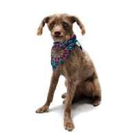 "Amanda Lane ""Blooming Mandala"" Pet Bandana"
