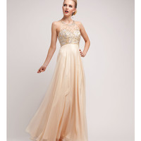 2014 Prom Dresses - Champagne Satin & Chiffon Beaded Gown
