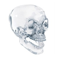 Crystal Skull w/ Movable Jaw by Summit Collection