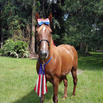 Patriotic Sequinned Equine Set - Red White and Blue Costume for Horse or Pony - Patriotic Horse Costume