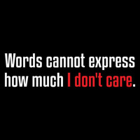 Words Cannot Express How MUCH I Don't Care Funny Tee  Hilarious Tee Great Tee Mens Shirt Ladies T Shirt Great Gift Christmas gift