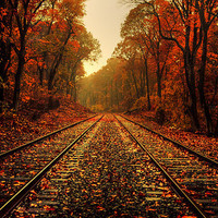 autumn, bay, beautiful, brown, color, colors - inspiring picture on Favim.com