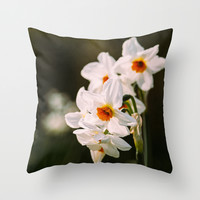 White Daffodil Flowers Throw Pillow by Pati Designs