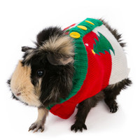 All Living Things® PetHoliday Ugly Sweater Small Animal | Costumes | PetSmart