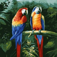 Couple Parrot Pictures Paint by numbers DIY Painting