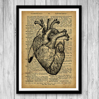 Human Heart Print, Medical Poster, Heart Dictionary Print, Anatomy Art Medical Print Graduation Gifts for Doctor, Cardiologist gift  (HA12)
