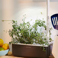 Click & Grow Smart Herb Garden Starter Kit III - Urban Outfitters