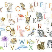 Animal Alphabet Poster - Watercolor Animals 11 x 14 wall art - nursery art – ABC nursery art