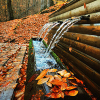 Autumn, leaves, fall, fountain, Nature photography, Wall Decor, lake, Orange, rustic, leaf, woodland in Fall, gift ideas, 8x12 inches