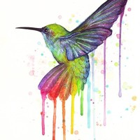 """Hummingbird Painted In Watercolor Rainbow"" - Art Print by Olga Shvartsur"