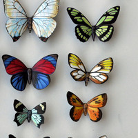 Butterfly Moth Magnets Wholesale Lot of 12 insects Refrigerator Magnets
