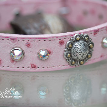 Pink Ostrich Leather Dog Collar Equestrian Style