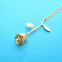 Lovely, Gold, Silver, Rose, Romantic, Night, Flower, Necklace