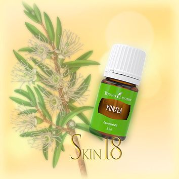 Kunzea Essential Oil Single