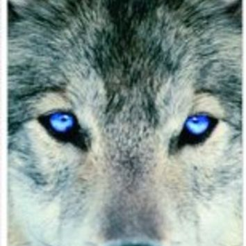 TabTM Blue Eyed Wolf White Hard Snap on Case Cover for Apple Iphone 4 & 4s Universal: Verizon - Sprint - At&t - Great Affordable Gift!