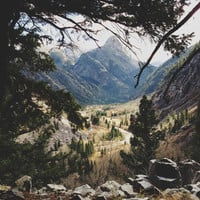 San Juan Forest Art Print by Kevin Russ | Society6