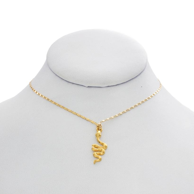 Image of Snake on a Chain Necklace
