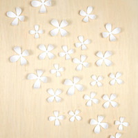 Wallflower Wall Decor - Set Of 25