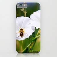 Wasp On A Flower iPhone & iPod Case by Pati Designs