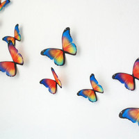 Prisma Butterflies- 3D Wall Art Set of 20 Colorful Teen Room Decor Kids Room Nursery Modern Hippie