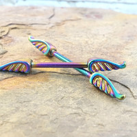 Rainbow Angel Wing Nipple Bar Jewelry Barbell