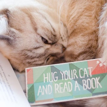 """Handmade funny Pet Cat Bookmark with a message """"Hug your cat and read a book"""""""