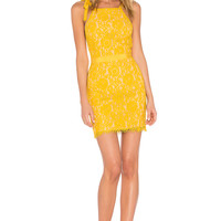 Endless Rose Tied Strap Lace Mini Dress in Honey Yellow | REVOLVE